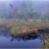 Adirondacks Cary Lake Morning Mist 14 September 2017