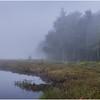 Adirondacks Cary Lake Morning Mist 16 September 2017