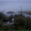 Adirondacks Cary Lake Morning Mist 2 September 2017