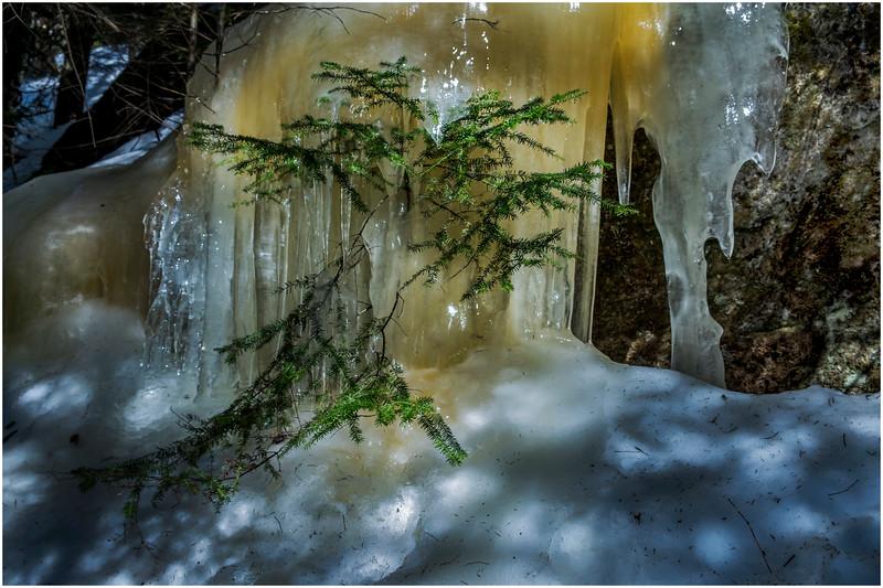 Adirondacks Mt Jo Trail Iceflow 14 February 2017