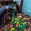 Ulster County NY Abandoned Bug 17 October 2017