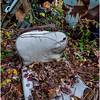 Ulster County NY Abandoned Bug 16 October 2017