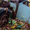 Ulster County NY Abandoned Bug 2 October 2017