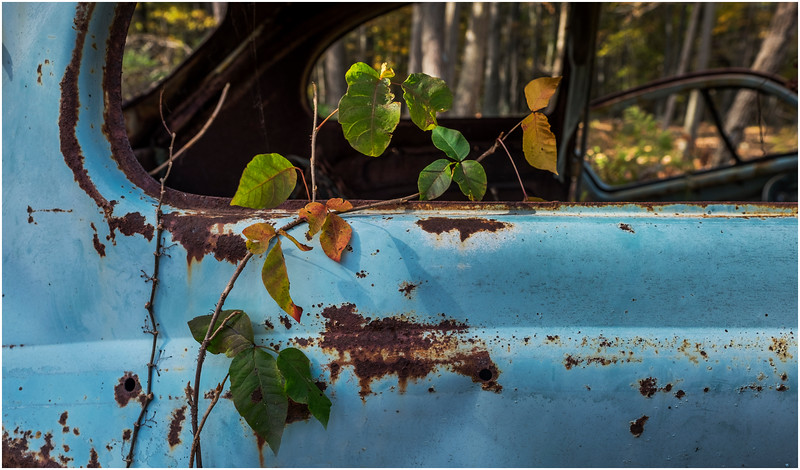 Ulster County NY Abandoned Bug 23 October 2017