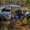 Ulster County NY Abandoned Bug 20 October 2017