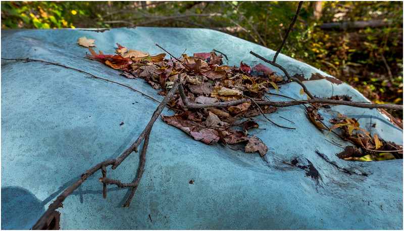 Ulster County NY Abandoned Bug 14 October 2017