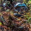 Ulster County NY Abandoned Bug 19 October 2017