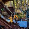 Ulster County NY Abandoned Bug 28 October 2017