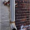 Troy NY Back Alley 6 Drainpipe January 2017