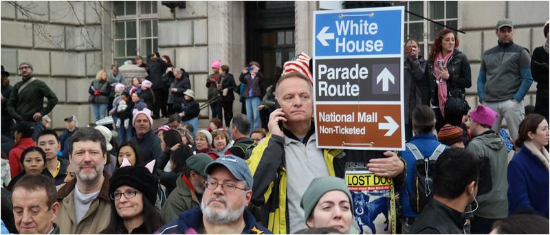 A Washington DC Womens March 71 January 21 2017