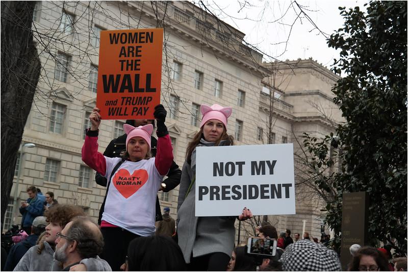 A Washington DC Womens March 65 January 21 2017
