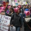 A Washington DC Womens March 252 January 21 2017