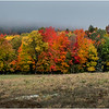 Adirondacks Cedar River Road 1 October 2018