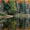 Adirondacks Buttermilk Falls 22 October 2018