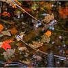 Adirondacks Buttermilk Falls 27 October 2018