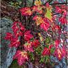 Adirondacks Buttermilk Falls 8 October 2018