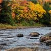 Adirondacks Cedar River 1 October 2018