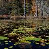 Adirondacks Essex Chain Seventh Lake 9 October 2018