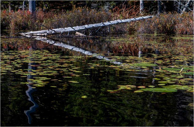 Adirondacks Essex Chain Seventh Lake 5 October 2018
