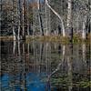 Adirondacks Essex Chain Fourth Lake 23 October 2018