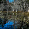 Adirondacks Essex Chain Fourth Lake 21 October 2018