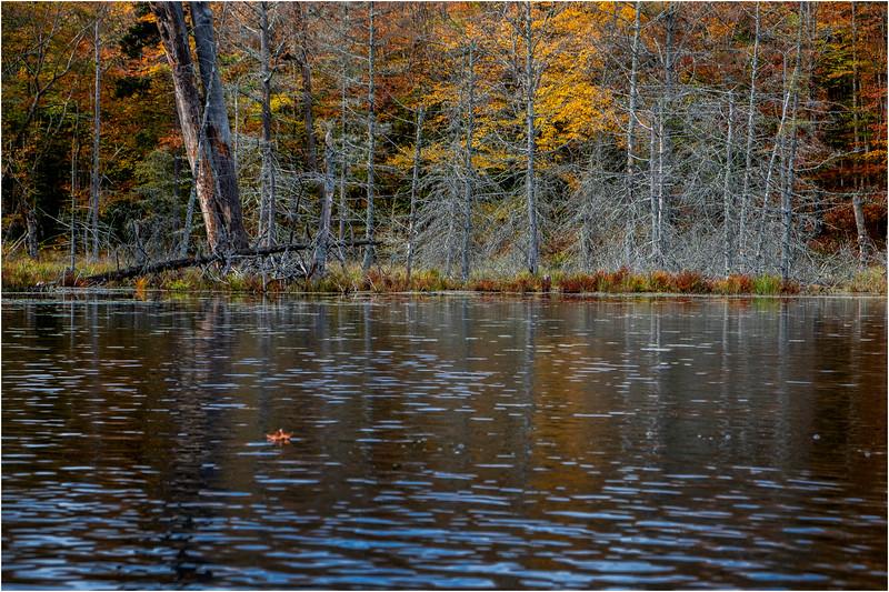 Adirondacks Essex Chain Fourth Lake 10 October 2018