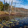 Adirondacks Essex Chain Sixth Lake 7 October 2018