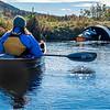 Adirondacks Essex Chain Fifth Lake 14 October 2018