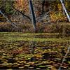 Adirondacks Essex Chain Seventh Lake 8 October 2018