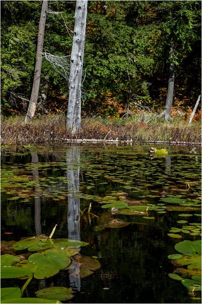 Adirondacks Essex Chain Sixth Lake 26 October 2018