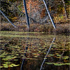 Adirondacks Essex Chain Seventh Lake 7 October 2018