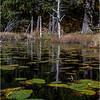 Adirondacks Essex Chain Sixth Lake 25 October 2018