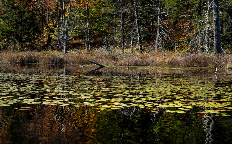 Adirondacks Essex Chain Seventh Lake 6 October 2018