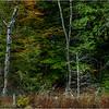 Adirondacks Essex Chain Fifth Lake 2 October 2018