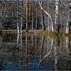 Adirondacks Essex Chain Fourth Lake 22 October 2018