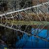 Adirondacks Essex Chain Seventh Lake 3 October 2018