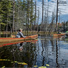 Adirondacks Essex Chain Fourth Lake 2 October 2018