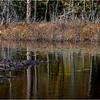 Adirondacks Essex Chain Sixth Lake 21 October 2018