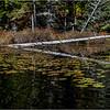 Adirondacks Essex Chain Seventh Lake 4 October 2018
