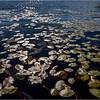 Adirondacks Essex Chain Seventh Lake 1 October 2018