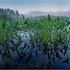 Adirondacks Forked Lake 67 July 2018