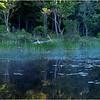 Adirondacks Forked Lake 108 July 2018