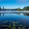 Adirondacks Forked Lake 132 July 2018