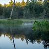 Adirondacks Forked Lake 68 July 2018