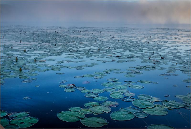 Adirondacks Forked Lake 87 July 2018