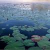 Adirondacks Forked Lake 90 July 2018