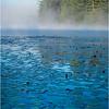Adirondacks Forked Lake 89 July 2018
