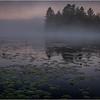 Adirondacks Forked Lake 38 July 2018