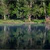 Adirondacks Forked Lake 110 July 2018