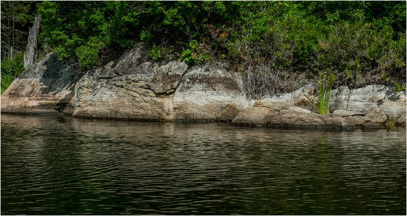 Adirondacks Squaw Lake Shoreline 9 July 2018